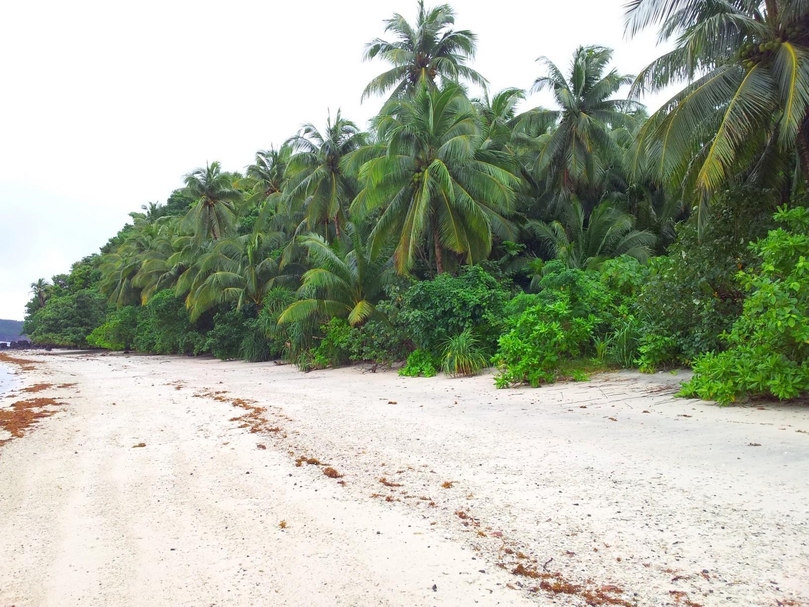 Coral Beach 3